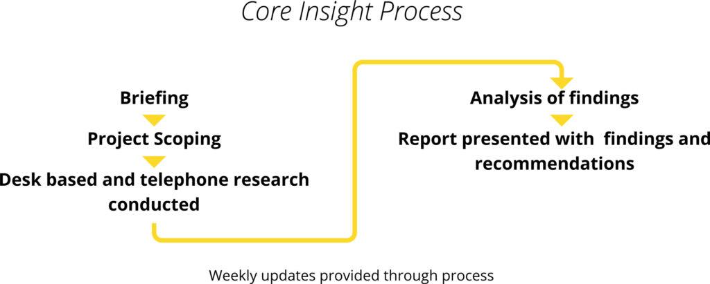 Talent Insight Process